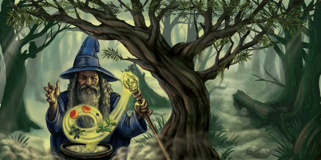 wizard 7 copy